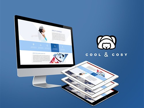 pro custom website design services to improve your company's web presence