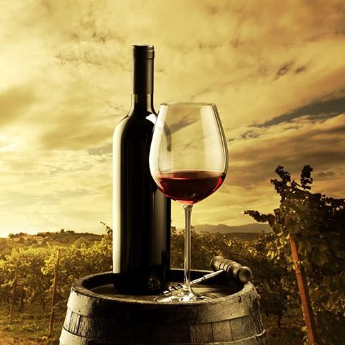 Wine-industry-CRM1
