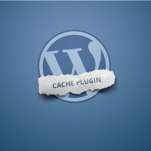 Pros and Cons of WordPress Cache Plugin