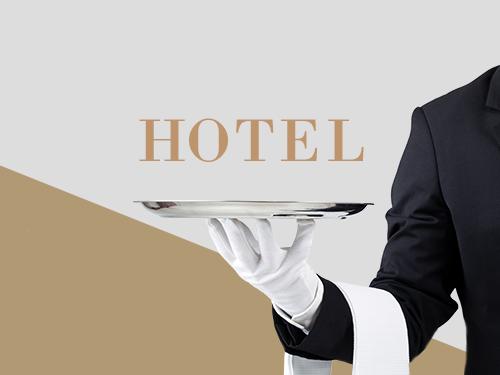 Pro Responsive Hotel Website Development