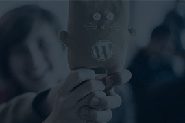 Meet Us at WordCamp Kiev 2016
