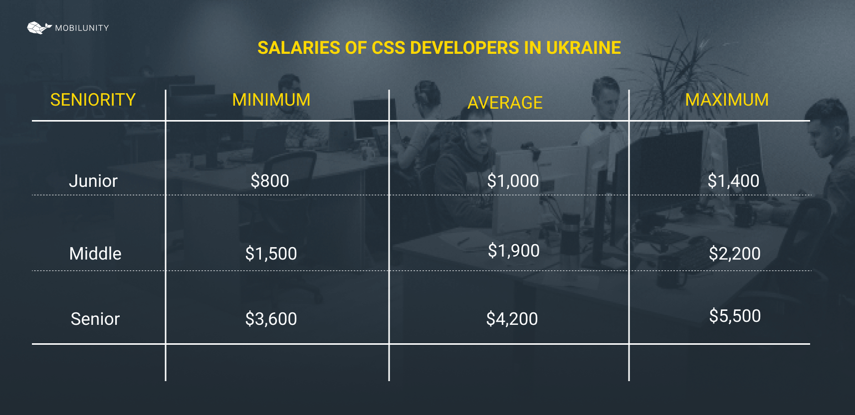 cost of css developer in Ukraine by the level