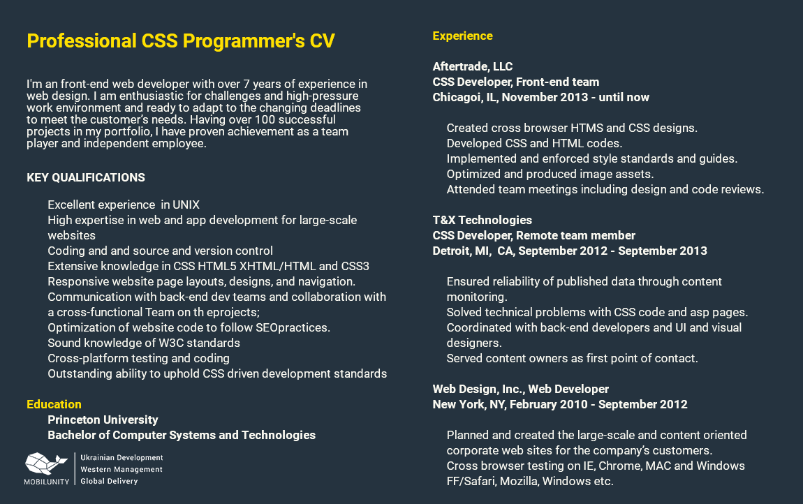 resume sample of CSS Ukraine developer