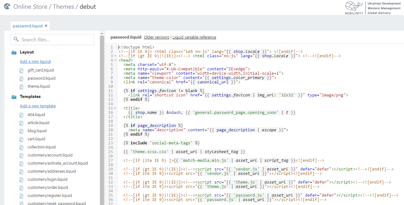 Shopify provides custom eCommerce website development