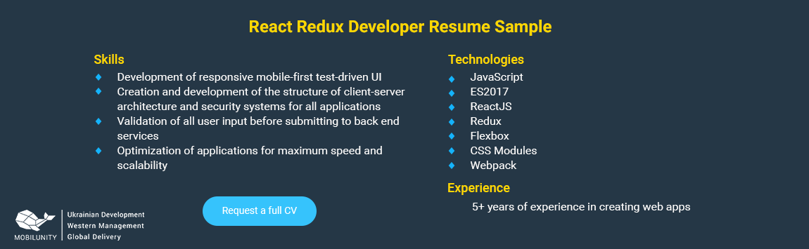 react redux developer cv example