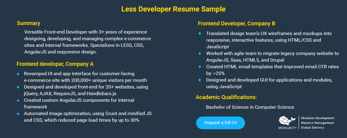 LESS developer CV