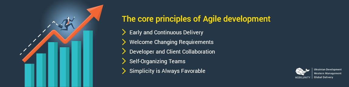 agile developer responsibilities
