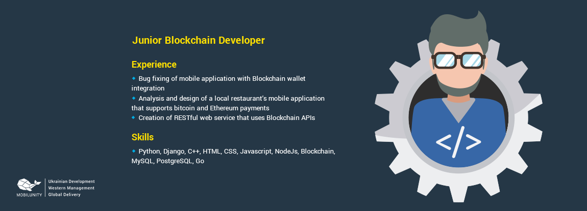 cv of a developers skilled at blockchain programming