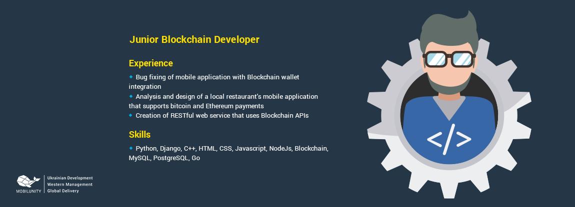 cv of a developers skilled at blockchain programming