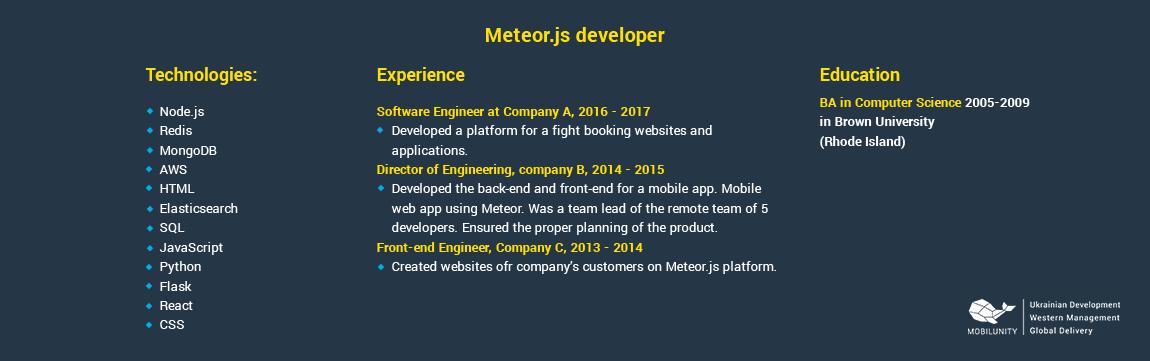 meteorjs developer resume sample