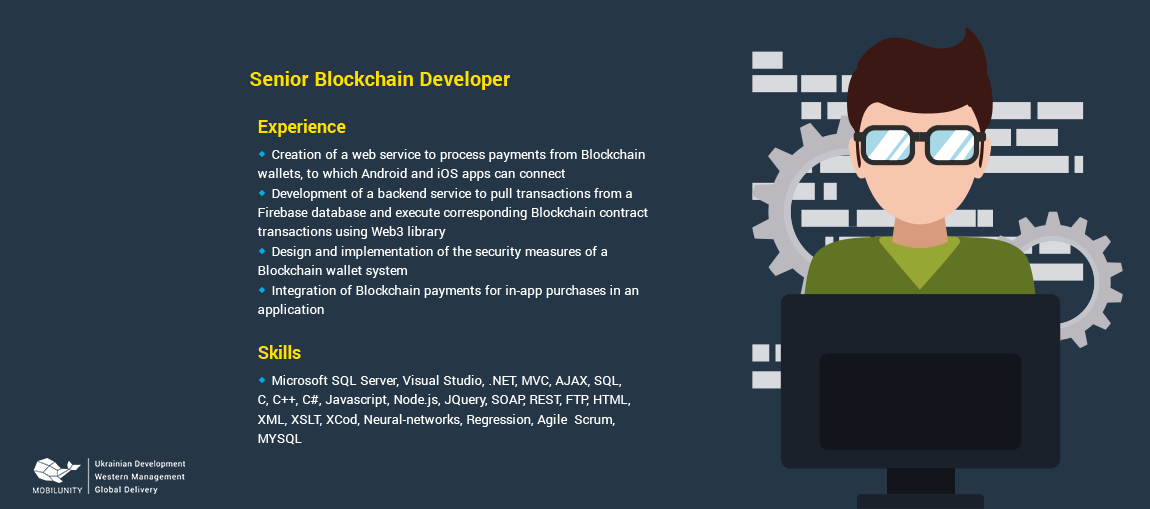 sample of a blockchain developer cv