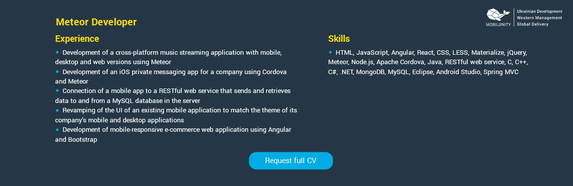 meteor developer resume sample