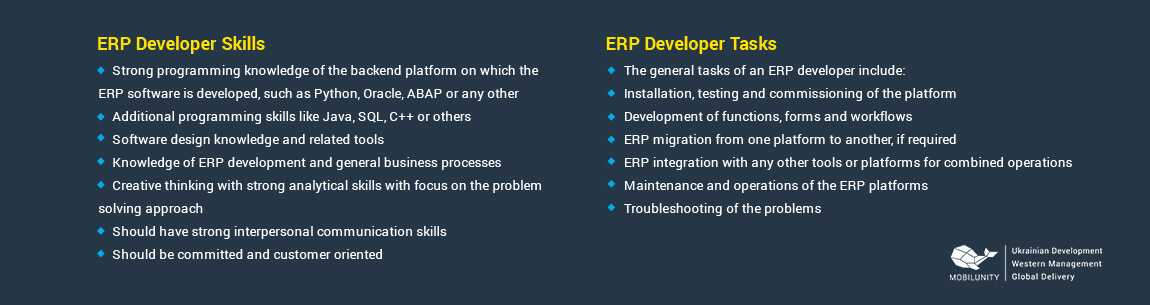 skills required for erp software developer