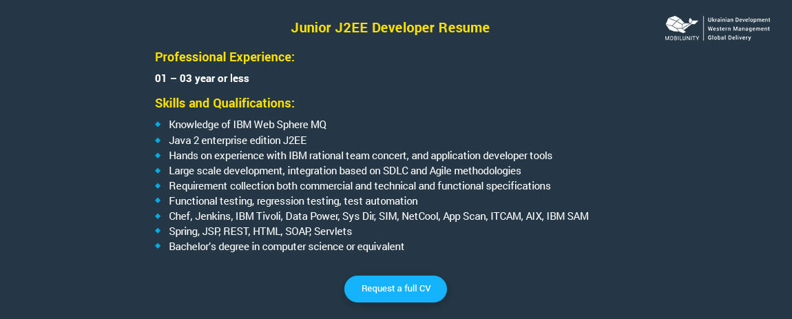 Junior Java Developer Resume Sample