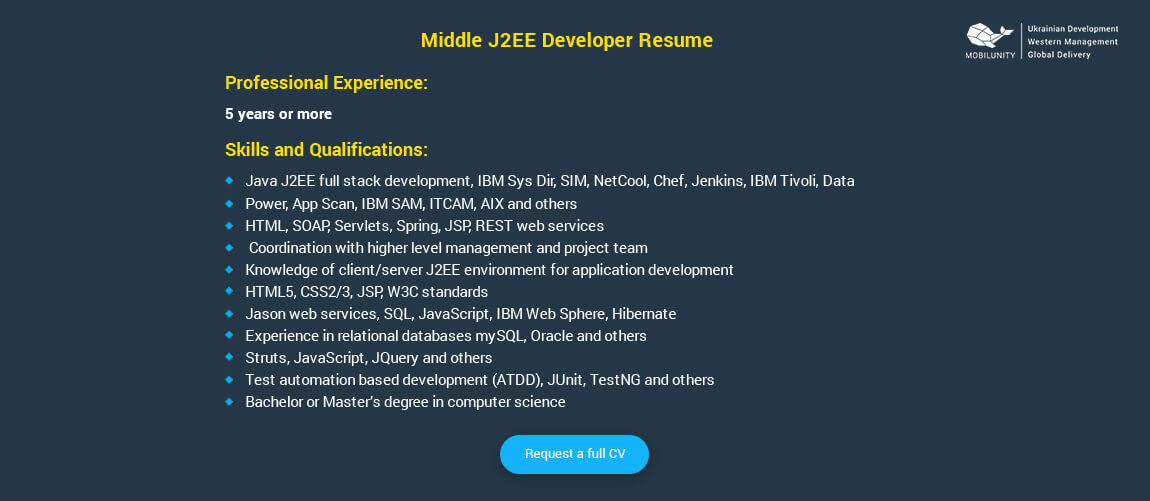 middle j2ee developer resume example