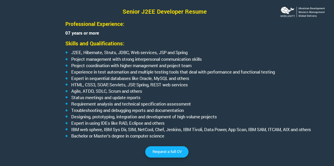 Senior J2EE Developer Resume Sample