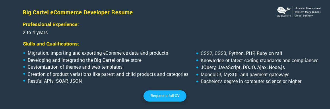 big cartel developer resume example
