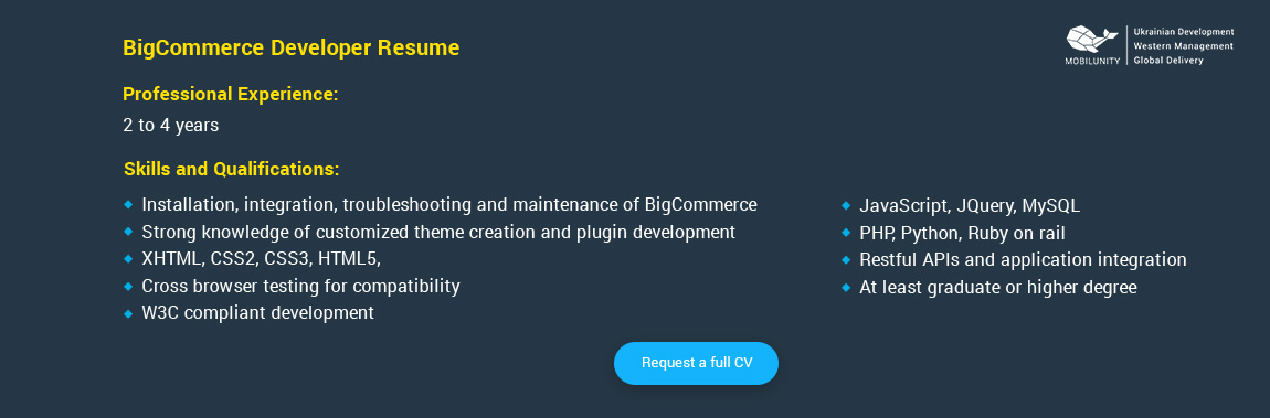 bigcommerce developer resume sample