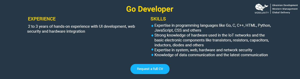 hire go developers to succeed in your business