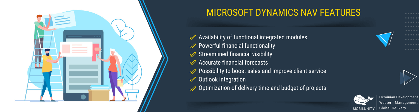 microsoft dynamics navision features