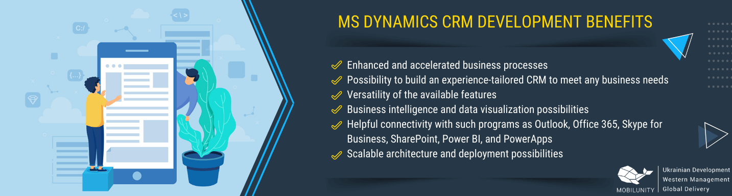ms crm consultant benefits for business