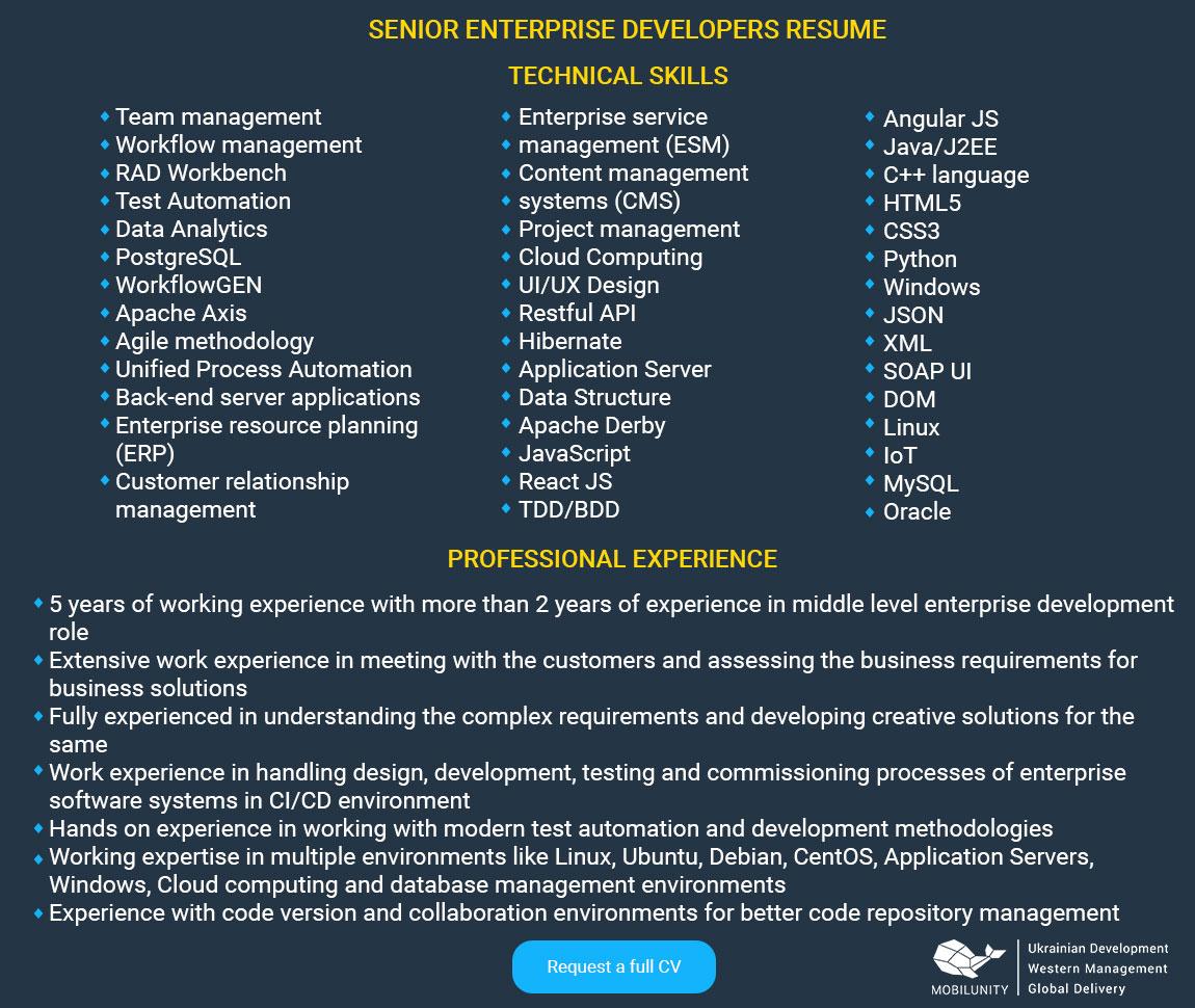 senior enterprise developer resume sample