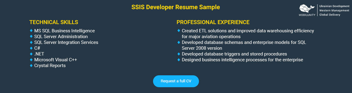 ssis developer resume sample