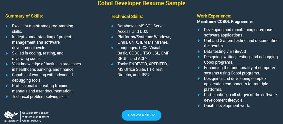 does the salary of a cobol developer really matter