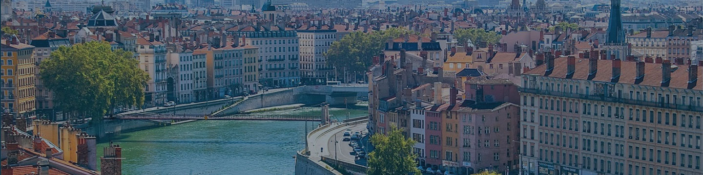 custom software development agency in Lyon