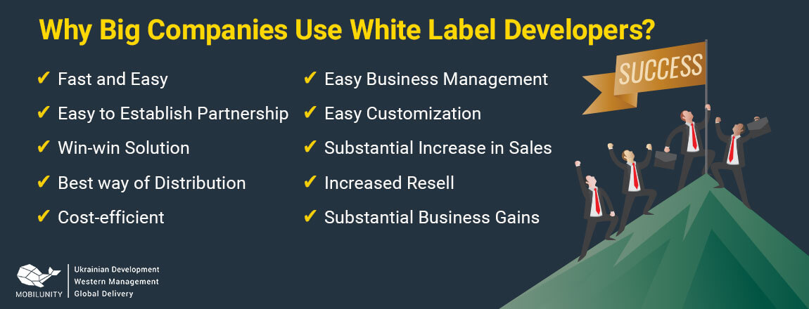 why big companies use white label web developer