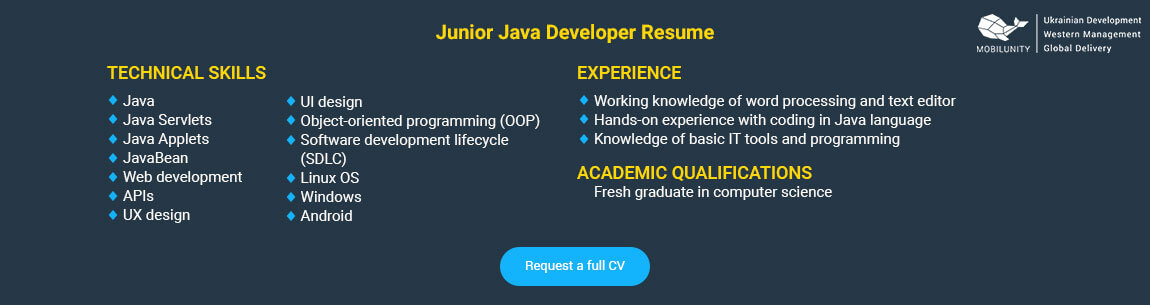 junior java applications developer resume sample