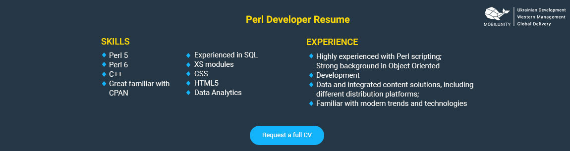 Perl Developer Why Do You Need To Hire One Mobilunity
