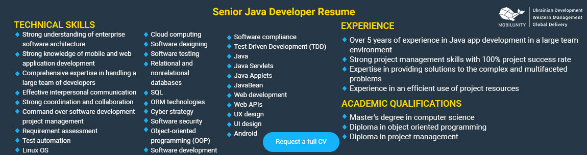 senior java application developer resume example