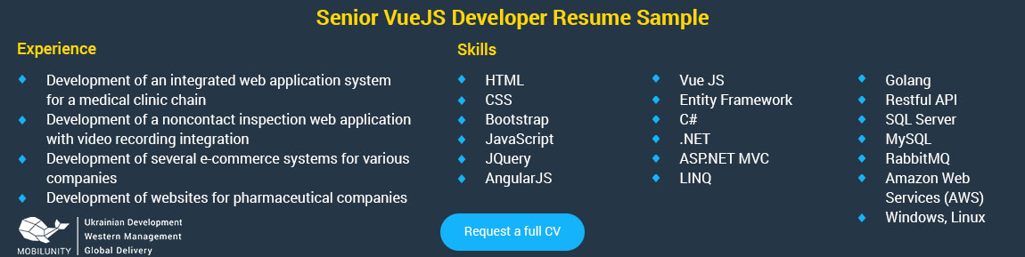 vue.js developer resumes