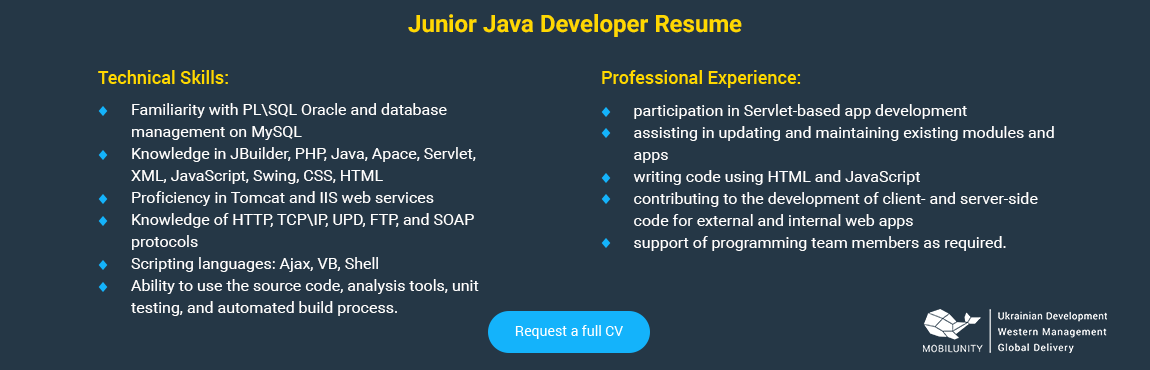 Check Java Developer Resume to Hire a Perfect Employee