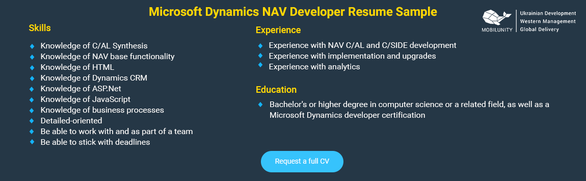 hire microsoft dynamics nav developer in ukraine
