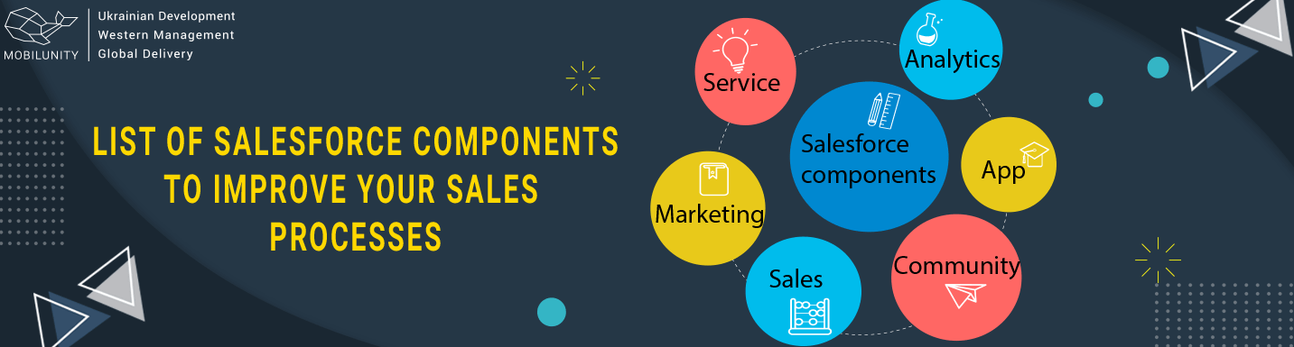 components of salesforce application development