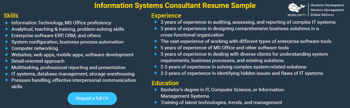 sample cv of information systems consultant