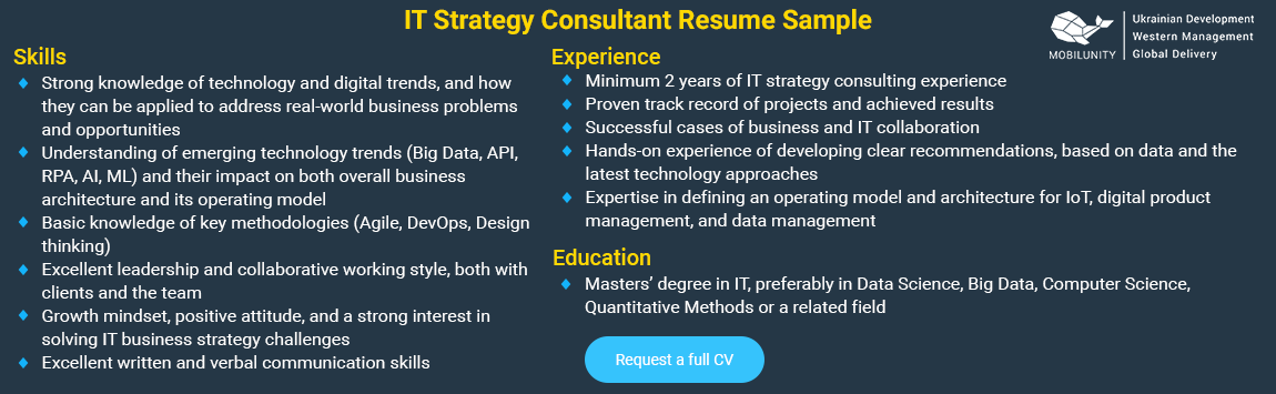 it strategy consultant cv sample