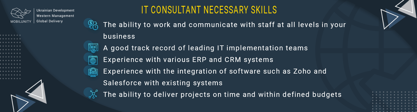 skills of information technology consultant