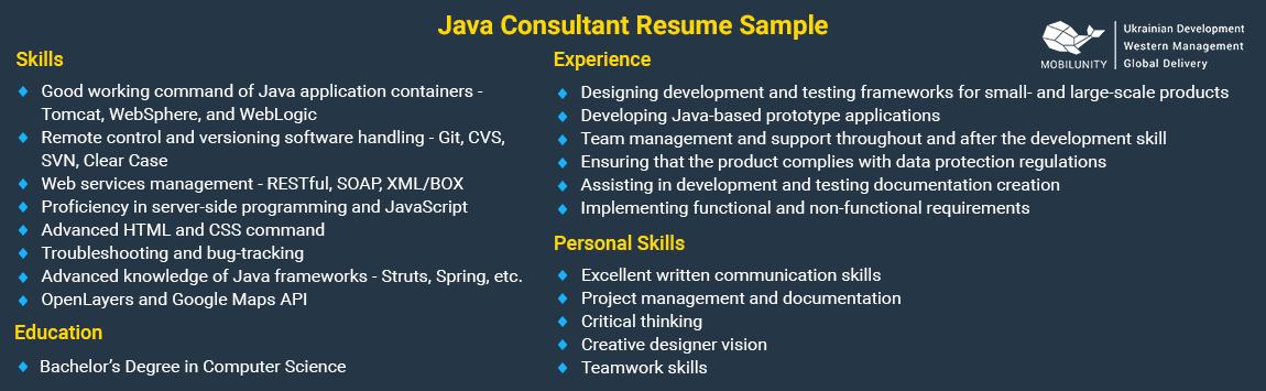sample of java consultant resume