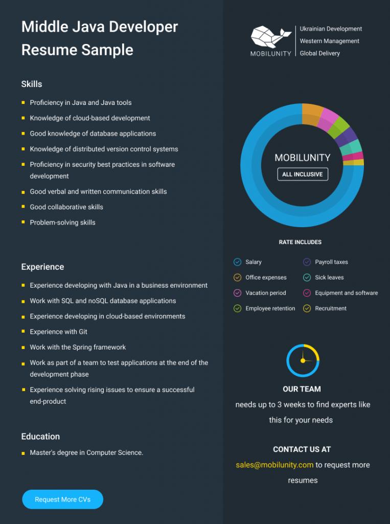 mid level java programmer resume example