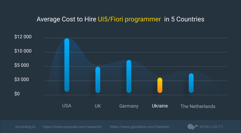 Average Cost to Hire UI5Fiori programmer  in 5 Countries