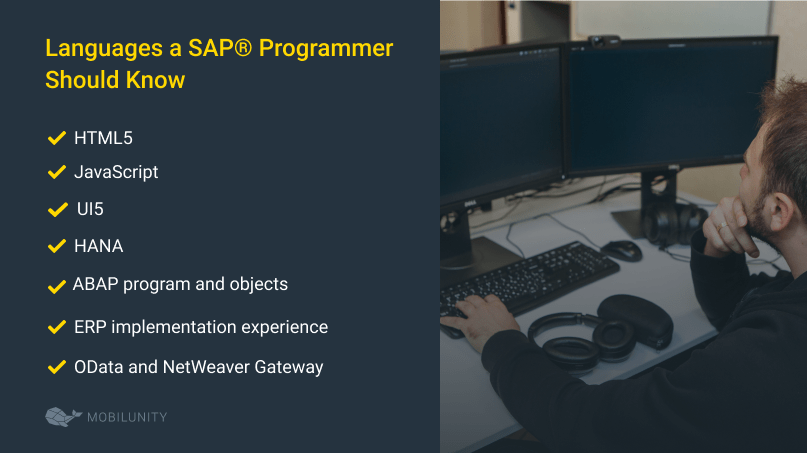 What Languages a SAP® Programmer Should Know