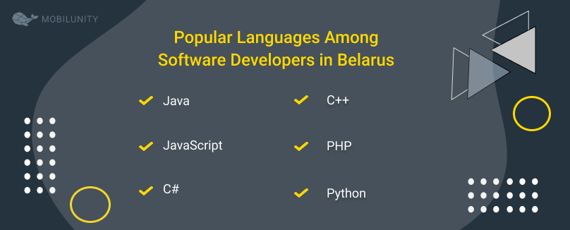 Popular Languages Among Software Developers in Belarus