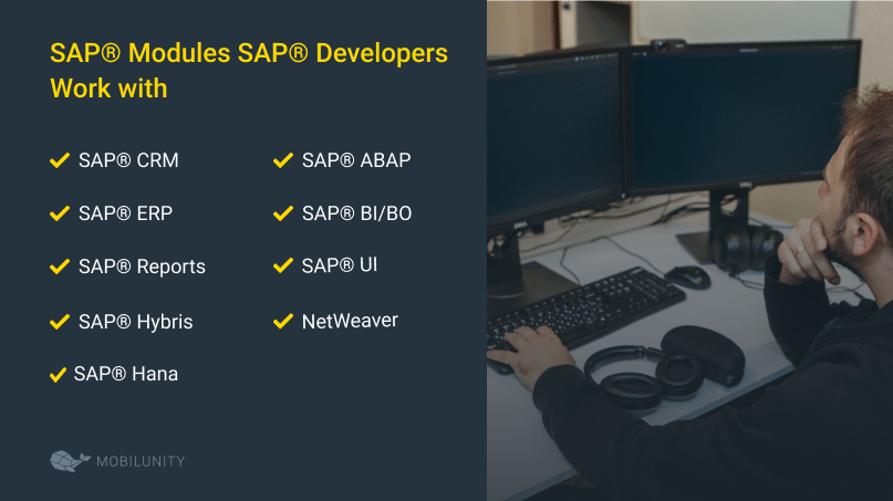What are SAP® Modules Developers Work WIth