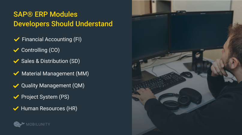 The SAP® ERP Modules All Developers Should Understand