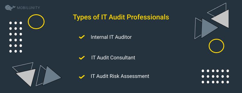 IT Auditors types