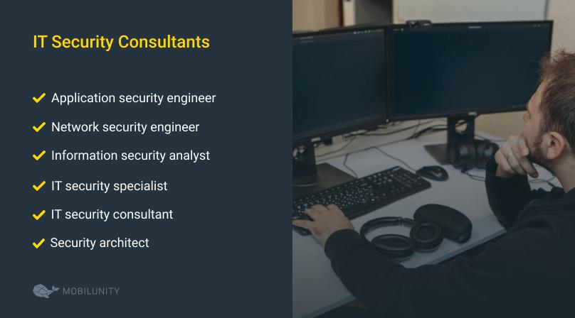 IT Security Consultants