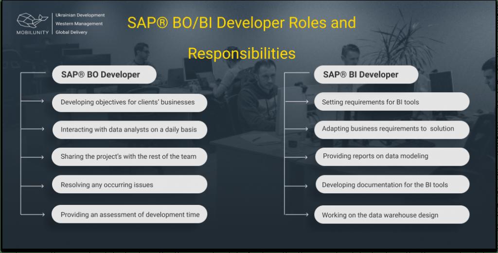 SAP® BOBI Developer Roles